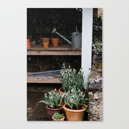 Spring Garden Shed Canvas Print