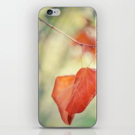 If You Forget Me iPhone Skin