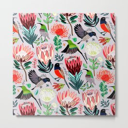Sunbirds and Proteas On Grey Metal Print