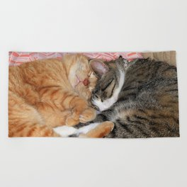 Nap Buddies Beach Towel