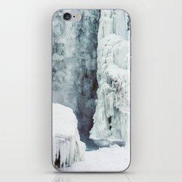 Minnehaha Falls iPhone Skin