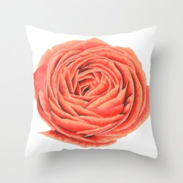 Rose. Big flower Throw Pillow
