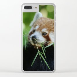 Red_Panda_20150704_by_JAMFoto Clear iPhone Case