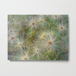 Fields of Ouch 2 Metal Print