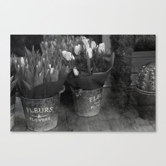 Fleurs & Flowers Canvas Print