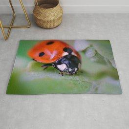Macro Ladybug Photograph Rug