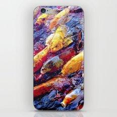 Koi Krazy iPhone & iPod Skin