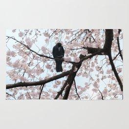 Mastering the sakura Rug