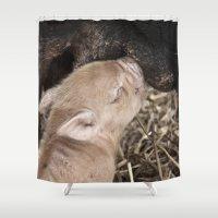piglet Shower Curtains featuring Piglet by Rachel's Pet Portraits