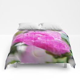 Pink Musk Mallow Rolled-up Comforters