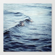 The Curl Canvas Print