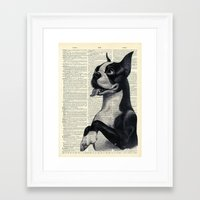 boston terrier Framed Art Prints featuring Boston Terrier by autumnsensation