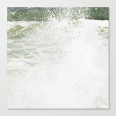 Playful wave Canvas Print