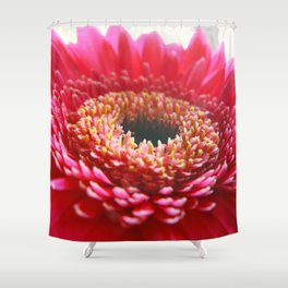 Red Germini Close up Shower Curtain