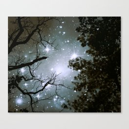 Starry Night Sky 2 Canvas Print