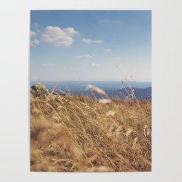 Moment of Zen Poster