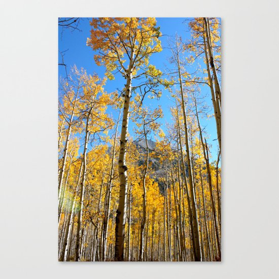 Enchiladas in the Trees 2 Canvas Print