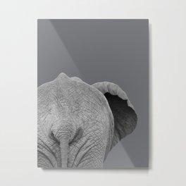 Elephant Wet Bum (Grey) Metal Print