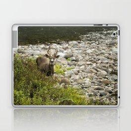 Handsome Deer on an Island No. 2 Laptop & iPad Skin