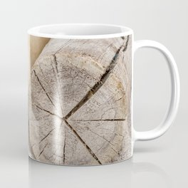 Sleeping sea lion on the beach Coffee Mug