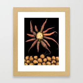 The Root Star Framed Art Print