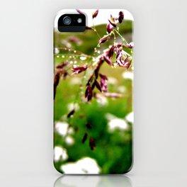 Summer tears iPhone Case