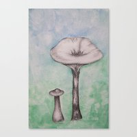 mushrooms Canvas Prints featuring mushrooms by Diane Nicholson