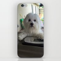 annie hall iPhone & iPod Skins featuring Annie by Mitch Tuckness