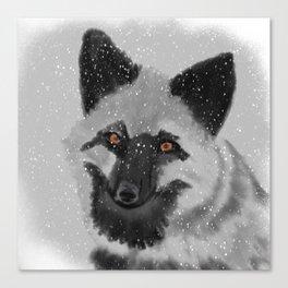 Silverfox Canvas Print