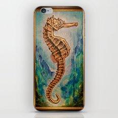 Sea Horse iPhone & iPod Skin