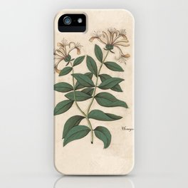 The Fragrant Honeysuckle iPhone Case