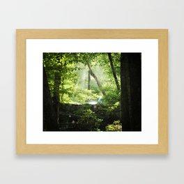 Late Summer Secrets Framed Art Print