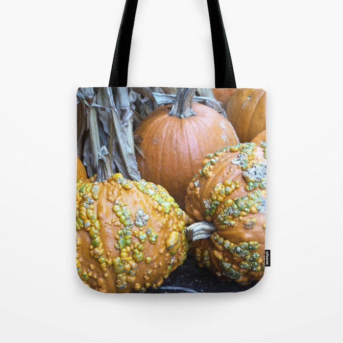 Longwood Gardens Autumn Series 332 Tote Bag