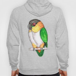 Black headed caique Hoody