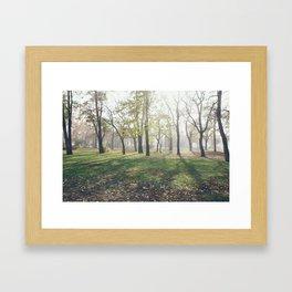Városliget Framed Art Print