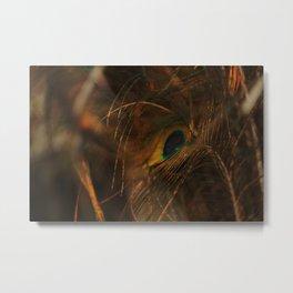 Peacock Eye of the Storm Metal Print
