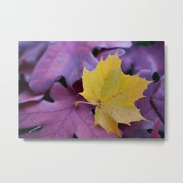 Yellow Gold Leaf on Red Metal Print