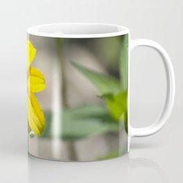 Longwood Gardens - Spring Series 232 Coffee Mug