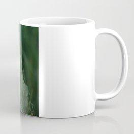 SPYDER ON GREEN Coffee Mug