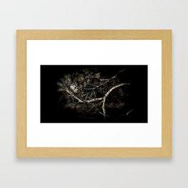 Gallery Two Framed Art Print