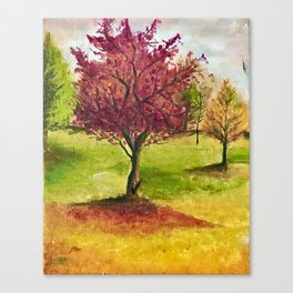 A little tree Canvas Print