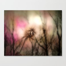 Shimmering Pink Canvas Print