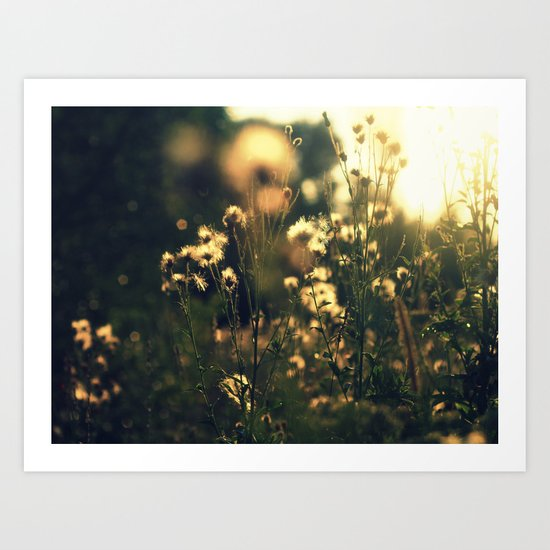 blured flowers Art Print