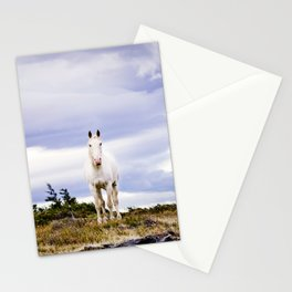 White horse, Torres Del Paine Stationery Cards