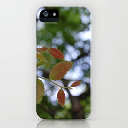 Early Summer iPhone Case