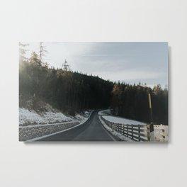 Winter love Metal Print