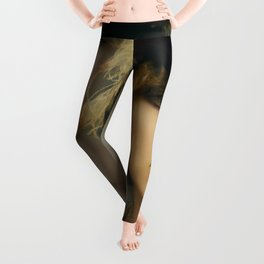 Colorful Vectorized Illustration Art Crystal Design Visions by Vectored,Nicks-2007 March Illustrated,Stevie-48720 Vector 27 Design Leggings