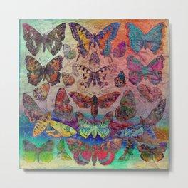 Butterflies & Moths Metal Print