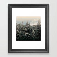 pine tree tops Framed Art Print