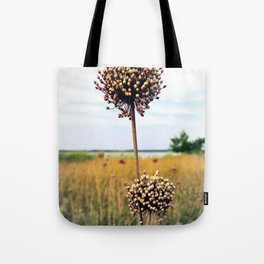 "Yorktown ""Onion"" Tote Bag"